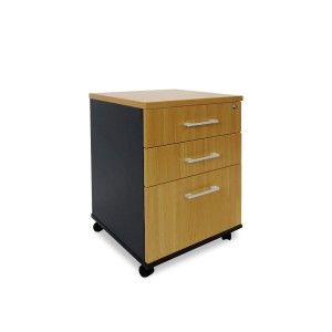 Delta 2-drawer And File Mobile Storage Unit