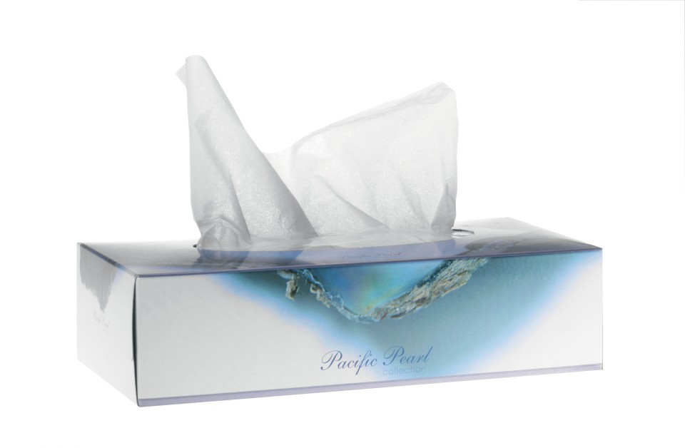 Pacific Pearl Facial Tissues 2 Ply White PF200 Box of 200