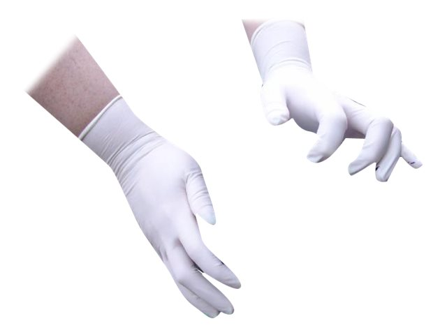 Disposable Latex Powder Free Gloves Large Bx100