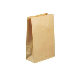 185X100X390mm Size 3 Block Bottom Paper Bag Pkt200
